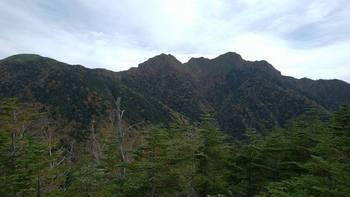 tachibayama-2.jpg